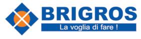 Logo cliente Brigrs